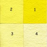 nuances jaune